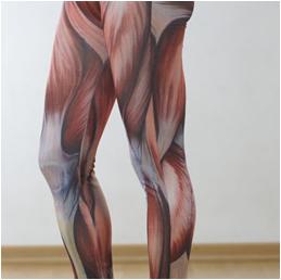 Kas Baskılı Tayt (Muscle Printed Yoga Pants)