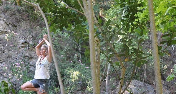 vücudumuz gökyüzüne uzanan ağacın gövdesidir 598x321 - Vücudumuz gökyüzüne uzanan ağacın gövdesidir
