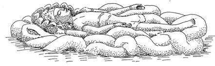 Shavasana (Ceset pozu)