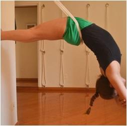 Iyengar Yoga Duvar Askı Takımı Ağı Image
