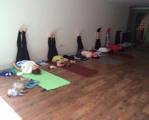14 3 495x400 - Şerife Karahançer ile Yoga Hocalık Temel Eğitimi Programı 2016