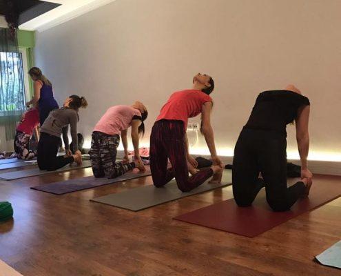 erife Karahançer ile Temel Yoga Eğitimi 12 495x400 - Şerife Karahançer ile Temel Yoga Eğitimi