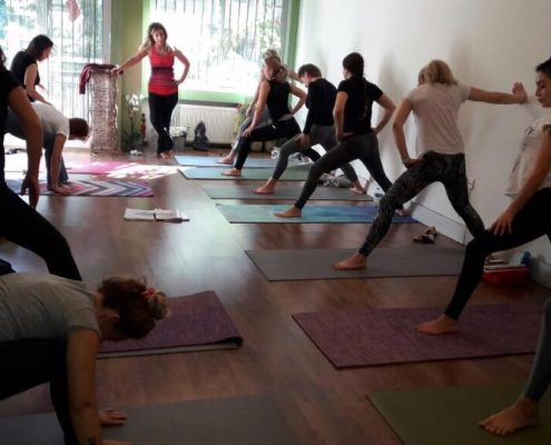 erife Karahançer ile Temel Yoga Eğitimi 2 495x400 - Şerife Karahançer ile Temel Yoga Eğitimi