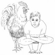 kukkutasana cock horoz pozu 180x180 - Eka Pada Koundinyasana (Karga Pozu)