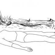 Ceset pozu 180x180 - Yoga ile bağışıklık sisteminin dengelenmesi