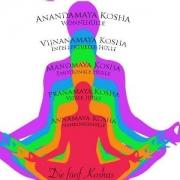 koşa 1 180x180 - Enerji Bedeni (Pranamaya Kosha)