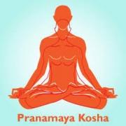 unnamed 180x180 - Fiziksel Beden (Annamaya Kosha)