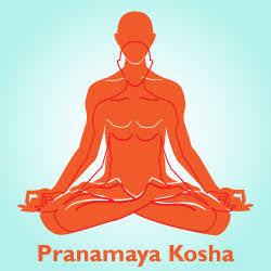 unnamed - Enerji Bedeni (Pranamaya Kosha)