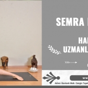 semra demirel ucar ile hamile yogasi uzmanlasma programi 2 180x180 - Ana Sayfa