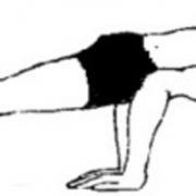 hamsana 180x180 - Padmasana (Lotus Pozu)