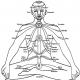 akra 80x80 - Natarajasana (Dansçı Pozu)