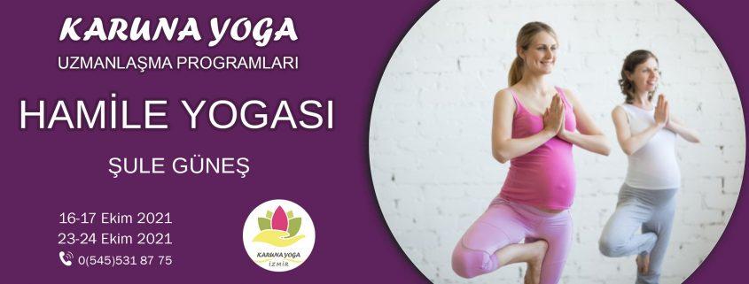 hamileweb 1 845x321 - Hamile Yogası Uzmanlaşma Programı