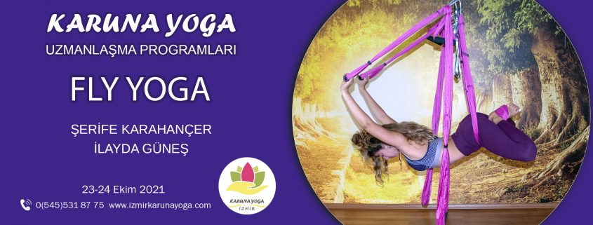 flyweb 845x321 - Aero Yoga (Seviye 1)